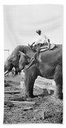 Burma: Elephant Bath Towel