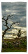 Burmis Tree And Wind Swept Pines Bath Towel