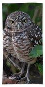 Burrowing Owl Color Version Bath Towel