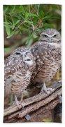 Burrowing Owl Pair  Bath Towel