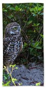 Burrowing Owls At Guard Bath Towel