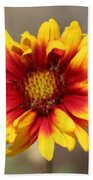 Butter Yellow And Crimson Red Coneflower Bath Towel