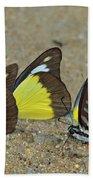 Butterflies Puddling Bath Towel