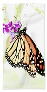 Butterfly 01 Bath Towel
