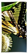 Butterfly 4 Bath Towel