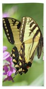 Butterfly #9 Hand Towel