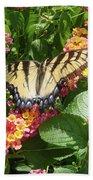 Butterfly Blend Bath Towel
