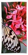 Butterfly Enchantment Bath Towel
