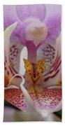 Butterfly Eyes Bath Towel