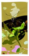 Butterfly In Color Bath Towel