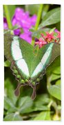 Butterfly In The Garden Bath Towel