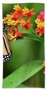 Butterfly Resting On Flower Bath Towel