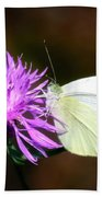 Cabbage Butterflies On Spotted Knapweed Bath Towel