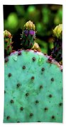 Cacti And Friends Bath Towel
