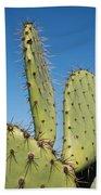Cactus Against Blue Sky Bath Towel