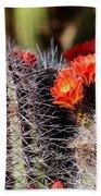 Cactus Bloom 033114g Bath Towel