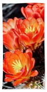 Cactus Bloom 033114j Bath Towel