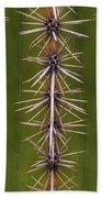 Cactus Spines Bath Towel
