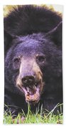 Cades Cove Black Bear Bath Towel