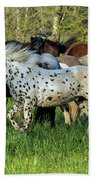 Cades Cove Horses Bath Towel