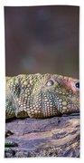 Caiman Lizard Bath Towel