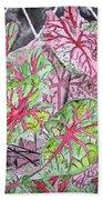 Caladiums Tropical Plant Art Bath Towel