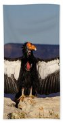 California Condor Bath Towel