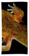 California Giant Salamander Larva Bath Towel