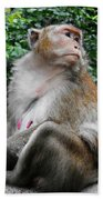 Cambodia Monkeys 2 Bath Towel