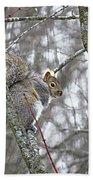 Camera Shy Grey Squirrel Bath Towel