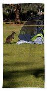 Camping With Swamp Wallaby Bath Towel