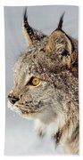 Canada Lynx Up Close Bath Towel