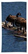 Canada Goose Family Line-up Bath Towel