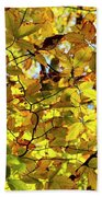 Canopy Of Autumn Leaves  Hand Towel