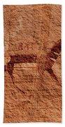 Canyon De Chelly Rock Art Bath Towel
