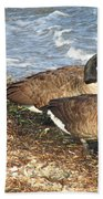 Cape Cod Beachcombers 1 Bath Towel