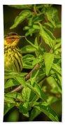 Cape May Warbler Bath Towel