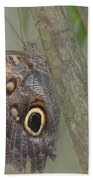 Captivating Photo Of A Brown Morpho Butterfly Bath Towel