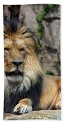 Captive Pride Bath Towel