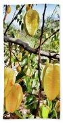 Carambola Fruit On The Tree Bath Towel