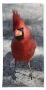 Cardinal 032714a Bath Towel