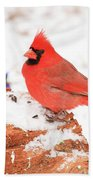 Cardinal In Snow Bath Towel
