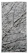 Cardinal In The Snow Hand Towel