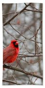 Cardinal In The Winter Bath Towel