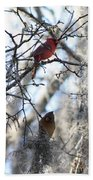 Cardinals In Mossy Tree Bath Towel