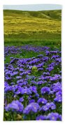 Carrizo Plain Wildflowers Bath Towel