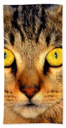 Cat Face Portraiture Bath Towel