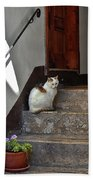 Cat On Steps Bath Towel