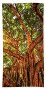 Catch A Sunbeam Under The Banyan Tree Bath Towel