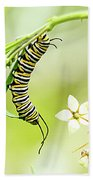 Caterpiller On Plant Bath Towel